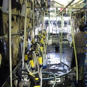 Increasing Farm Productivity