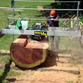 Increasing Forestry Productivity